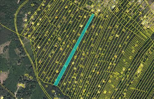 Prodej lesa, lesních pozemků o celkové ploše 4.113m2, k.ú. Kníničky, okres Brno