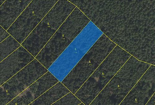 Lesní pozemek 4891m2, p.č. 1778, k.ú. Jevíčko-předměstí, Jevíčko