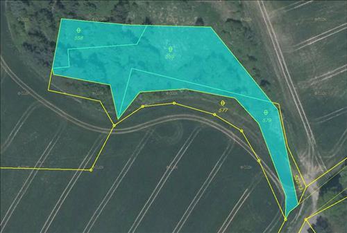 Pozemky o celkové ploše 3.015m2, k.ú. Tuhaň u Dubé, okres Česká Lípa
