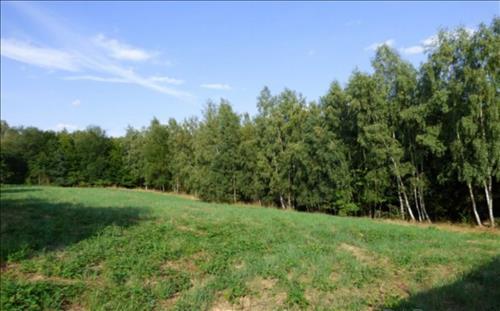 Stavební pozemky o celkové ploše 2.910m2, k.ú. Chlum u Zbýšova, okres Kutná Hora