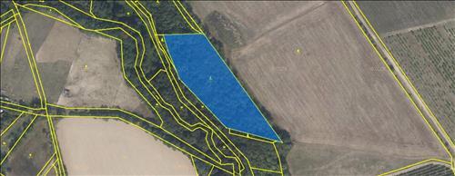 Lesní pozemek 9.494 m2, k.ú. Horní Libina, obec Libina