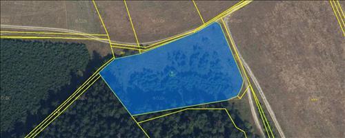 Lesní pozemek 6134 m2, k.ú. Březinka, obec Slatina, okres Svitavy