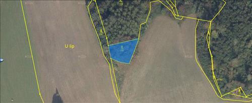Prodej lesních pozemků 23.577m2, k.ú. Písečná u Jeseníka, okres Jeseník