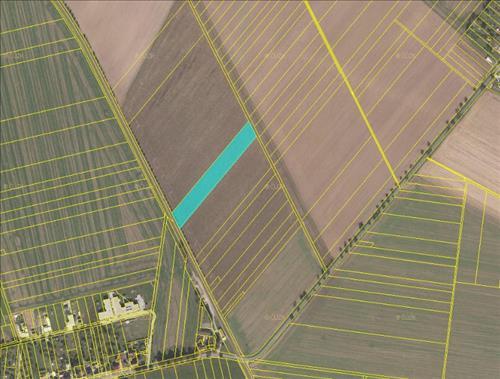 Prodej pole o výměře 8.103m2, k.ú. Slatinice na Hané, okres Olomouc