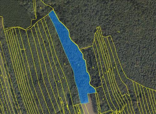 Prodej lesního pozemku o výměře 16.135m2, k.ú. Sehradice, okres Zlín