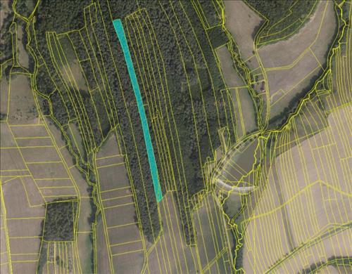 Prodej lesních pozemků o výměře 9.697m2, k.ú. Slopné, okres Zlín