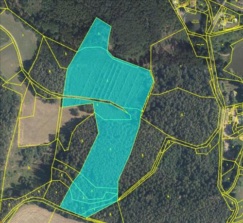 Prodej souboru pozemků o výměře 43.236m2, k.ú. Vížky, okres Chrudim