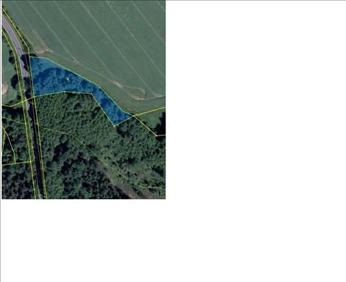 Prodej pozemku o výměře 3.151m2 - ostatní plocha, k.ú. Radvanov, okres Sokolov
