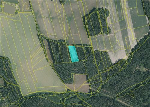 Prodej lesních pozemků o výměře 6.640m2, k.ú. Mostečný, okres Jindřichův Hradec
