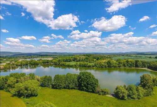 Prodej pozemků o výměře 3.657m2 nacházející se v k.ú, Dunávice, okres Benešov