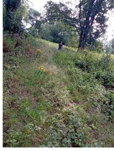 Prodej pozemku k rekreaci o výměře 3.897m2, k.ú. Litoměřice, okres Litoměřice