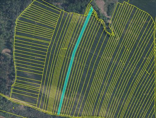 Nabízíme k prodeji podíl 3/4 souboru pozemků o celkové výměře 3.989m2, k.ú. Sudice u Náměště nad Oslavou, okres Třebíč.