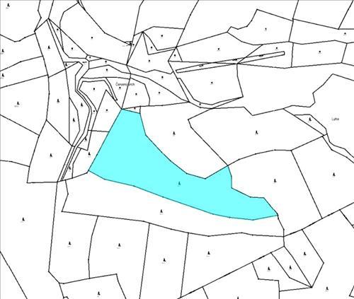 Prodej lesního pozemku o výměře 17.347m2, k.ú. Kojetín u Petrovic, obec Petrovice, okres Příbram